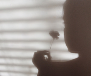 flowers, girl, and shadow image