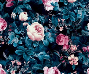 background, roses, and floral image