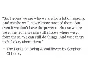 stephen chbosky and the perks of being a wallflower image
