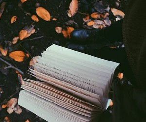 alternative, attractive, and autumn image