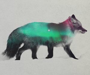 art and fox image
