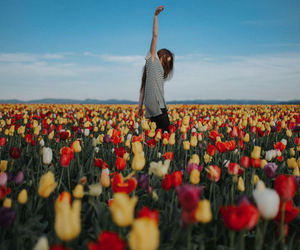 colors, dance, and fields image