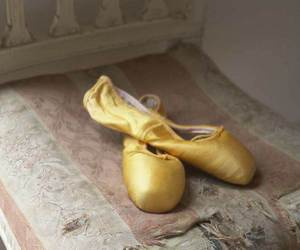 shoes and ballerinas image