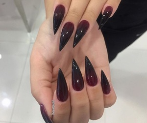 beauty, black, and claws image