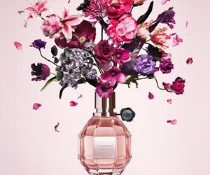 blooming, flowerbomb, and flowers image