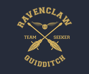quidditch, ravenclaw, and team seeker image