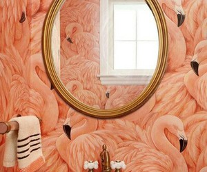 flamingo, home, and pink image