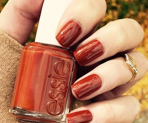 autumn, beauty, and cosmetics image