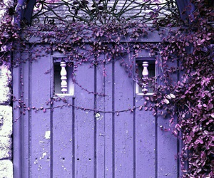 door, lavender, and flowers image