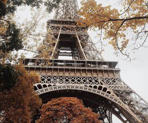 paris, eiffel tower, and autumn image