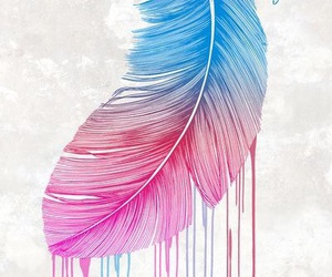feather, wallpaper, and colors image