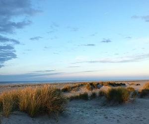 beach, free, and pretty image