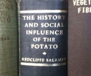 potato, book, and funny image