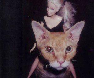 cat, barbie, and grunge image