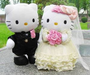 kitty, wedding, and couple image