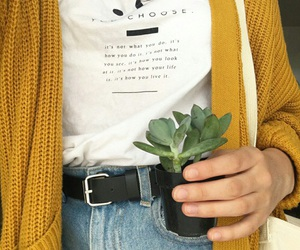 yellow, plants, and tumblr image