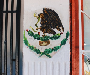 eagle, gate, and mexico image