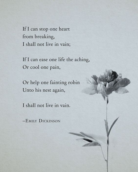 My Favourite Poem Of All Time Emily Dickinson Poem If I Can