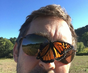 butterfly, funny, and lee pace image