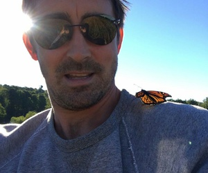 beautiful, butterfly, and lee pace image