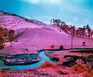 pink, landscape, and nature image