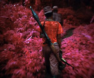 infrared, photography, and richard mosse image