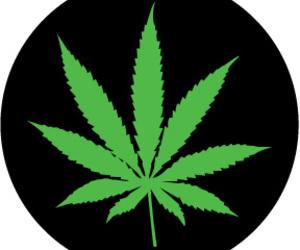 weed image