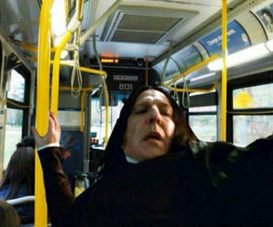 funny, harry potter, and bus image