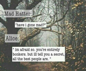 mad hatter, alice in wonderland, and alice image