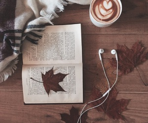 autumn, brown, and chill image