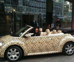 car, animal print, and leopard image
