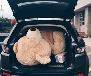 bear, hipster, and teddy bear image