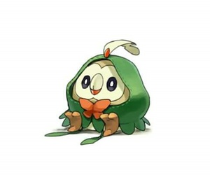 pokemon, cute, and rowlet image