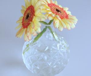 vas and blomma image