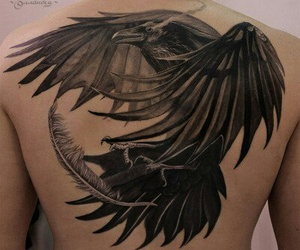 feather, raven, and tatoo image