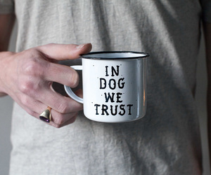 dog, want, and love image