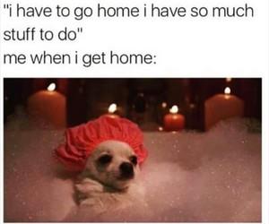 bath, funny, and home image