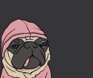 wallpaper, pug, and dog image