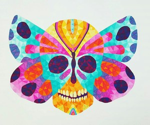 butterfly, calavera, and colors image