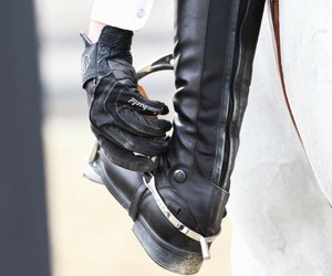 apparel, equine, and riding image