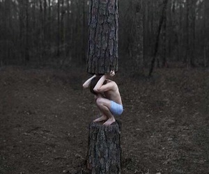 alternative, inspiring, and woods image