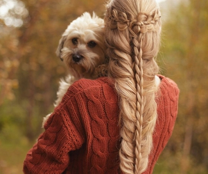 hairstyle, dog, and hair image