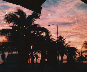 clouds, palms, and photography image