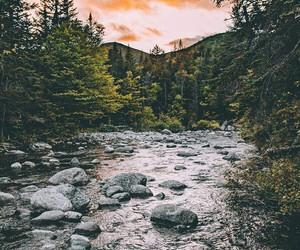 arboles, lago, and rocas image