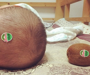 baby, funny, and kiwi image