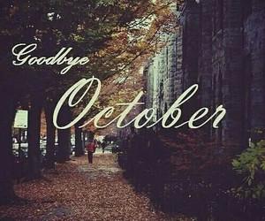 fall, goodbye, and november image