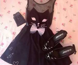 dress, cat, and fashion image