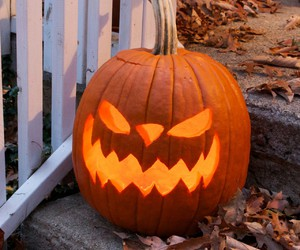 autumn, carved, and Halloween image