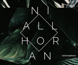 landscape, niall horan, and nature image
