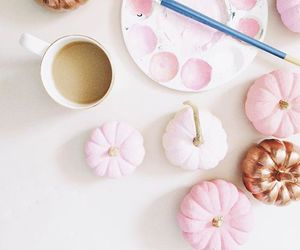 pink and pumpkin image
